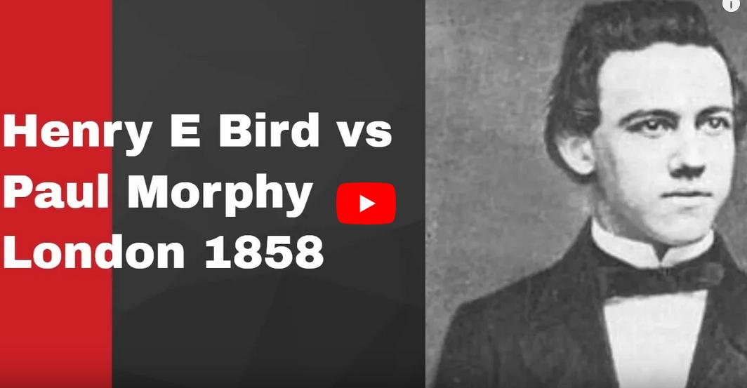 Bird morphy